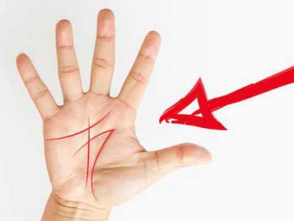 Bàn tay chữ M ở phụ nữ nói lên điều gì?