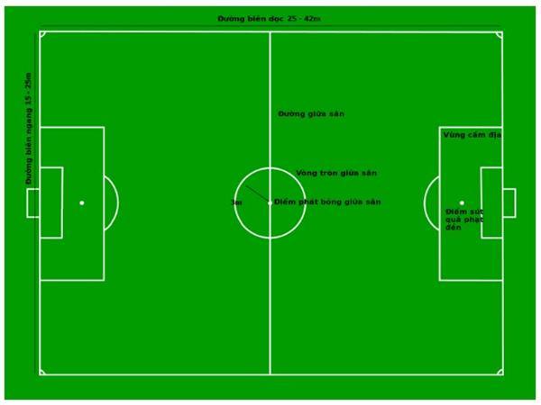 Diện tích sân bóng đá đúng chuẩn theo quy định quốc tế