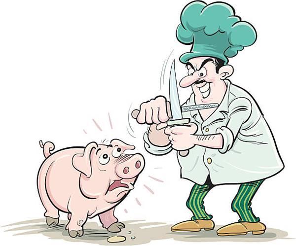 Điềm báo bí ẩn giấc mơ thấy giết lợn muốn mang đến là gì